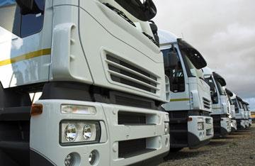 eurowelt-trasporti-internazionali-flotta-automezzi--(4)